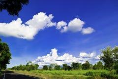 Grüne Wiese, weiße Wolken, blauer Himmel Lizenzfreies Stockfoto