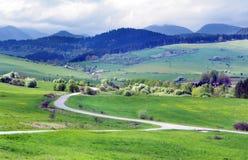 Grüne Wiesen über Bobrovnik-Dorf stockbild