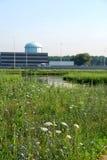Grüne Wiesen- und Bürohaus Stockfoto