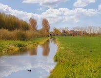 Grüne Wiesen und der Kanal nahe Bauernhof in den Niederlanden Lizenzfreie Stockfotografie