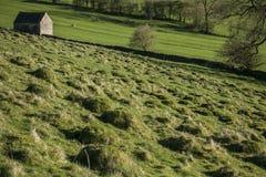 Grüne Wiesen und eine Halle, Höchstbezirk, England stockbilder