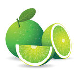 Grüne Zitrone lizenzfreie abbildung