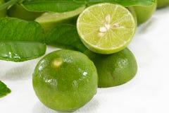 Grüne Zitrone Lizenzfreie Stockbilder