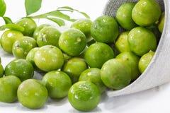 Grüne Zitrone Stockfotos