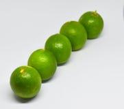 Grüne Zitrone auf weißem Hintergrund Lizenzfreie Stockbilder