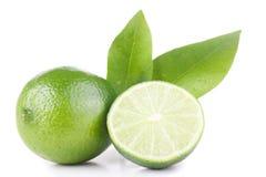 Grüne Zitrone und Blätter Stockbild