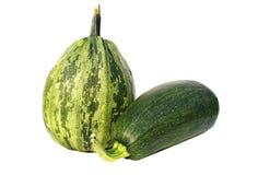 Grüne Zucchini-frisches rohes Gemüse Stockbilder