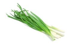 Grüne Zwiebeln des Bündels Lizenzfreie Stockbilder