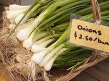 Grüne Zwiebeln am Markt Stockfotografie