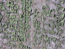 Grünen Sie abgezogenen Bretterzaun als Hintergrund, Beschaffenheit Stockfoto