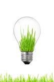 Grünen Sie Energiekonzept: Glühlampe mit Gras nach innen Lizenzfreie Stockfotos