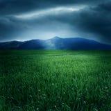 Grünen Sie Feld und Berge Lizenzfreie Stockbilder