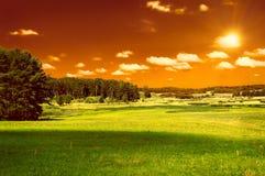 Grünen Sie Feld, Wald und roten Himmel Stockfotografie