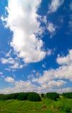 Grünen Sie Felder und blauen Himmel Stockfotografie