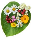 Grünen Sie Inneres mit Blumen und trägt Hintergrund Früchte lizenzfreie stockfotos