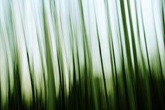 Grüner abstrakter Hintergrund Stockbild
