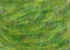 Grüner abstrakter Hintergrund Stockfotografie