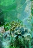 Grüner abstrakter Hintergrund mit Wasser- und Wespennest, unscharfer Hintergrund, farbige Abstraktion Lizenzfreie Stockfotografie