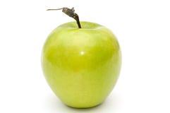 Grüner Apfel. Stockfotos