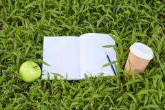 Grüner Apfel, der auf frischem Gras liegt Lizenzfreie Stockbilder