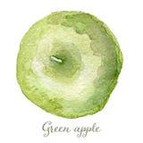 Grüner Apfel des Aquarells - handgemalt Stockbild