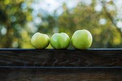 Grüner Apfel drei Stockbild