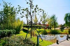 Grüner Ausstellungs-Garten in Zhengzhou Lizenzfreie Stockfotografie
