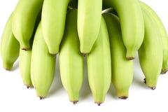Grüner Bananen-Baut. Stockfoto