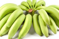 Grüner Bananen-Baut. Stockfotografie