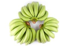 Grüner Bananen-Baut. Lizenzfreie Stockbilder