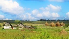 Grüner Bauernhof Stockfoto
