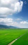 Grüner Bauernhof mit blauem Himmel und weißen Wolken Stockfotos