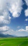 Grüner Bauernhof mit blauem Himmel und weißen Wolken Lizenzfreie Stockfotos