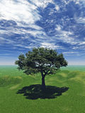 Grüner Baum stock abbildung