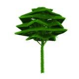 Grüner Baum abgedeckt mit Gras Stockfotografie