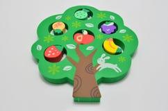 Grüner Baum-Gummiradiergummi lizenzfreie stockfotos