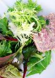 Grüner belaubter Kopfsalatsalat mit Pastete Lizenzfreie Stockfotografie