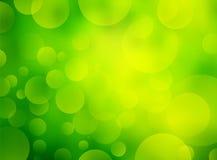 Grüner Biohintergrund Stockfotos