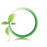 Grüner Blathintergrund Lizenzfreie Stockfotos