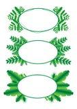 Grüner Blattrahmenvektor und Illustration 01 Stockfotos