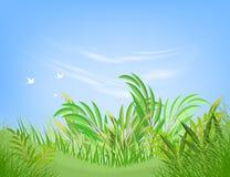 Grüner Blattszenenvektor Stockbild
