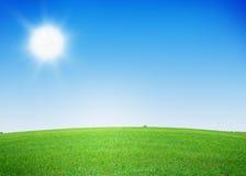 Grüner blauer Himmel der Rasenfläche und des freien Raumes Stockbilder
