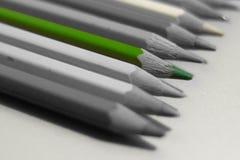 Grüner Bleistift auf einem Hintergrund der farblosen Nahaufnahme Stockbilder