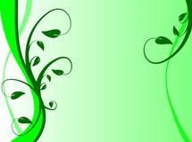 Grüner Blumenhintergrund Lizenzfreie Stockfotografie