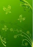 Grüner Blumenhintergrund Stockbilder