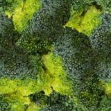 Grüner Brokkoli lokalisiert auf weißer Draufsichtvektorillustration Stockfoto