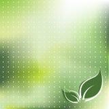 Grüner bunter Hintergrund Stockfotos