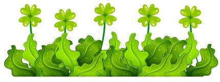 Grüner Busch mit vier Blattklee stock abbildung