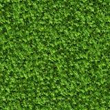 Grüner Bush. Nahtlose Beschaffenheit. vektor abbildung