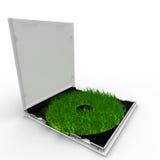 Grüner CD Kasten mit Gras anstelle von ihm Stockfotos